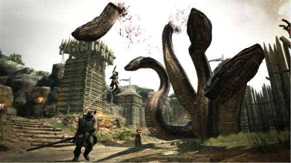 Dragons Dogma Hydra